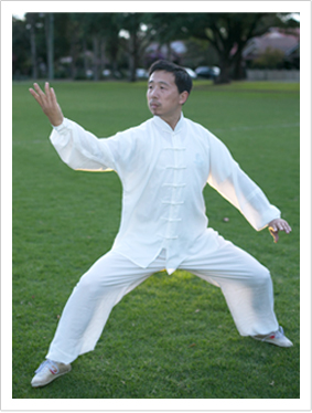 Chen Style Tai Chi Xin Jia (New Frame) Is Attributed To Chen Fake. The Xin  Jia Was Mainly Adapted From Classic Old Frame. Comparing To U0027oldu0027 Frame, ...